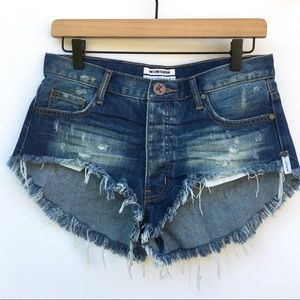NWOT ONE X ONETEASPOON Rollers Denim Shorts